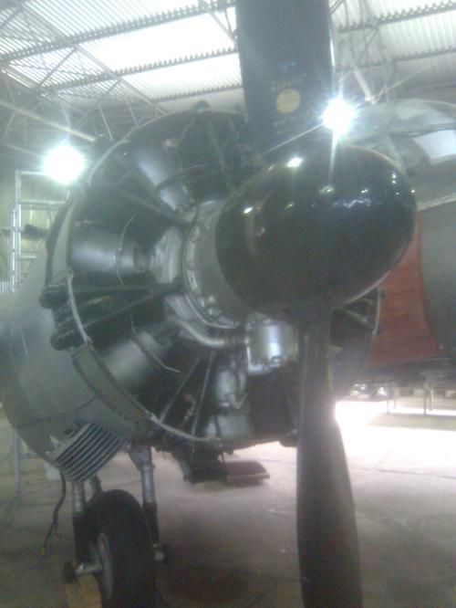 Image268